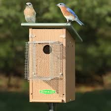 duncraft bird safe bluebird house pole with noel guard