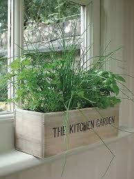 Indoor Garden Kit Best 25 Herb Garden Kit Ideas On Pinterest Standing Planter