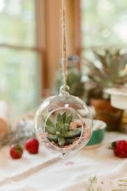 hanging terrarium ornaments with assorted succulents u2014 pots u0026 pans