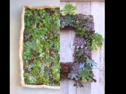 easy succulent vertical garden ideas youtube