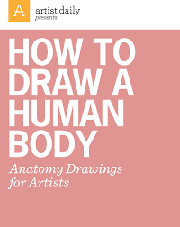 the ultimate guide to studying u0026 drawing anatomy for artists