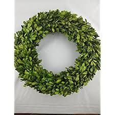 preserved boxwood wreath 14 in by tradingsmith home