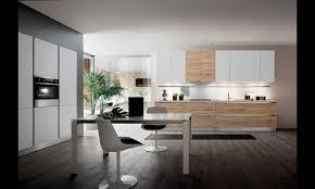 cuisine photo moderne cuisine moderne sans poignées blanche et bois