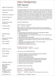 Sample Resume Of Ceo Ceo Resume Template Ceo Graphic Designer Short Run Printer Resume