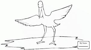 bird wings coloring pages water bird coloring pages coloring pages