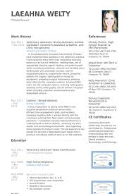 Dental Receptionist Resume Examples by Veterinary Resume Samples Visualcv Resume Samples Database