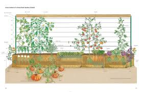 home decor luxury vegetable garden trellis designs and ideas for