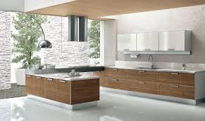 modern kitchen interior design ideas kitchen modern l shaped kitchen interior design idea decorating