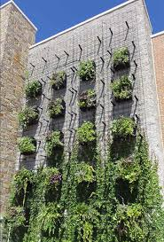 green wall garden planters deepstream designs