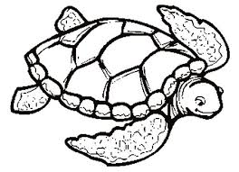 coloring turtle colouring turtle coloring game u201a turtle
