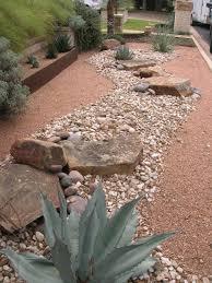 paisaje con piedras y plantas grasas poco mantenimiento en el