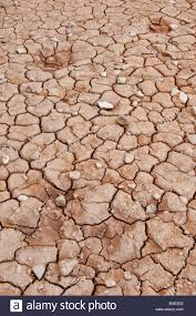 Floor Dry by Dry And Cracked Mud On Desert Floor In Arches National Park Utah