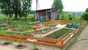 Backyard Vegetable Garden Design  Erikhanseninfo - Backyard vegetable garden designs