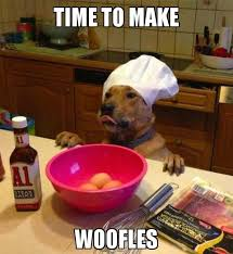 Chef Meme - chef dog makes breakfast i can has cheezburger