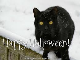 black cat halloween wallpaper happy halloween 2017 images pictures photos and wallpapers in hd