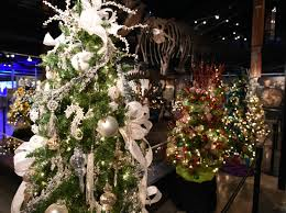 light up your holiday at jingle tree in sugar land beyondbones