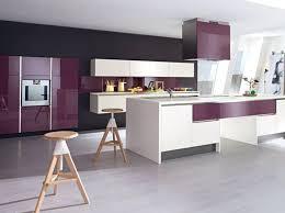 cuisine violette cuisine blanc gris violet cethosia me