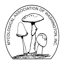 mycological association of washington dc
