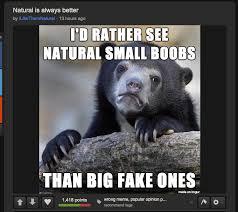 Big Boobs Meme - confession time album on imgur