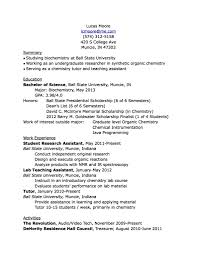 College Tutor Resume What To Put On A College Resume