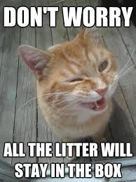 Sarcastic Cat Meme - sarcasm cat memes quickmeme