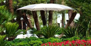Palm Tree Patio Umbrella Commercial Patio Umbrella Fabric Aluminum Ocean Master