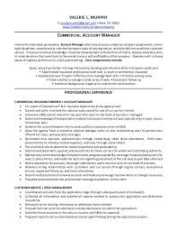 Sample Resume Account Executive by Account Manager Resume Click Here To Download This Sales