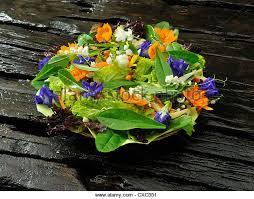 Edible Flowers Edible Flowers Stock Photos U0026 Edible Flowers Stock Images Alamy