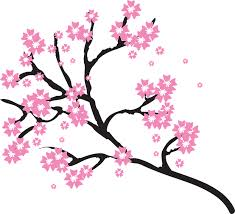free vector graphic blossoms branch cherry floral free image