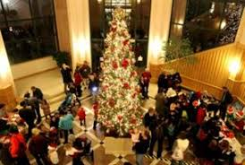 city of mountain view community tree lighting celebration