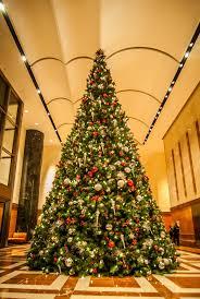 festively decorated trees stockvault net