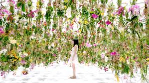 Cut Flower Garden by A Suspended Flower Garden That Lifts Out Of The Way When A Person