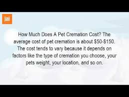 cremation cost how much is a cremation for a dog