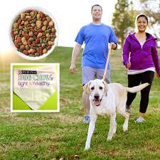 purina light and healthy free purina dog chow light healthy dog food and a doggy bandana