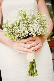 wedding flowers knoxville tn wax flower and gypsophila posy floral gypsophila