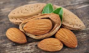 nutrition bringing traditional foods back legumes grains