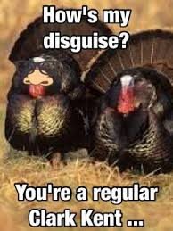 memes thanksgiving turkey search laugh of the day