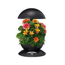 amazon com aerogarden 3 with gourmet herb seed kit black