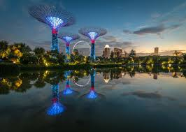 nature landscape architecture trees building water lake night