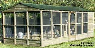 large chicken coop and run plans with easy to build large chicken
