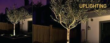 Brinkmann Landscape Lighting Led Low Voltage Garden Lights Low Voltage Led Landscaping Lights