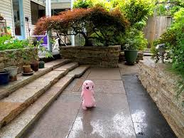 Landscaping Ideas For A Small Backyard 25 Trending Inexpensive Landscaping Ideas On Pinterest Yard