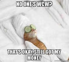 No Ones Wcw Meme - no one s wcw that s okay still got my money pered cat meme