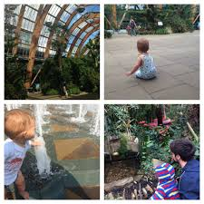 things to do in sheffield with a toddler 5 ideas for fun toddler