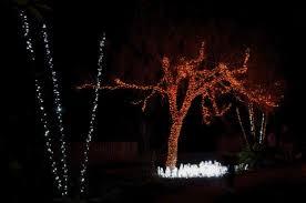 raining lights picture of brookgreen gardens murrells inlet