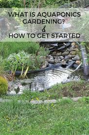 self sustaining garden aquaponic gardening create a self sustaining garden life with