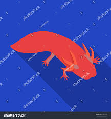 mexican axolotl icon flat style isolated stock vector 623251226