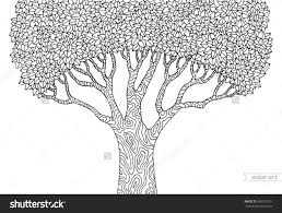 coloring pages forest tree isolated big old tree vector botany
