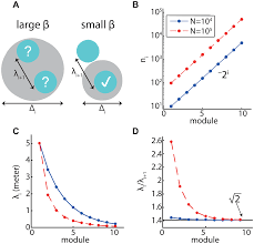 an efficient coding theory for a dynamic trajectory predicts non