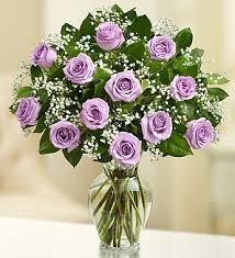 purple roses elegance premium stem purple roses